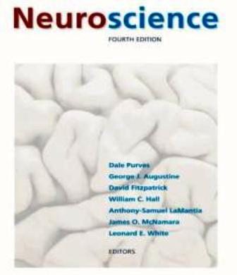 Neuroscience book cover
