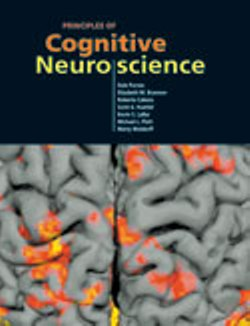 Principles of Cog Neuro book cover
